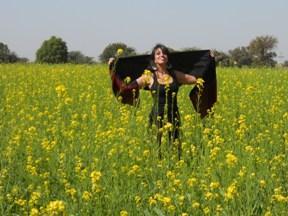 mustard field rajasthan