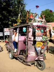 rajasthan by road